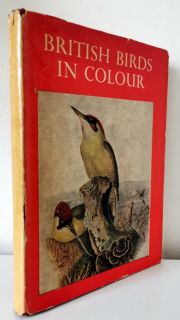British Birds in Colour