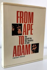 From Ape to Adam: Search for the Evolution of Man